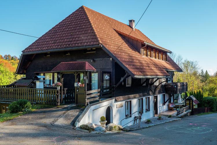 Duitsland | Baden-Wurttemberg | Appartement te huur in Dachsberg   met wifi 4 personen