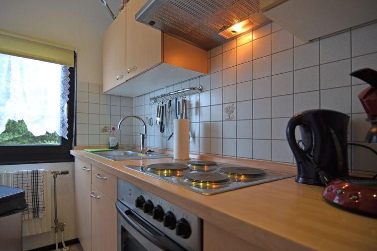 vakantiehuis Duitsland, Sauerland, Willingen-Usseln vakantiehuis DE-34508-41