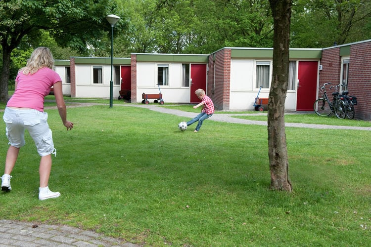 Vakantiehuizen Nederland | Limburg | Vakantiehuis te huur in Arcen met zwembad  met wifi 10 personen