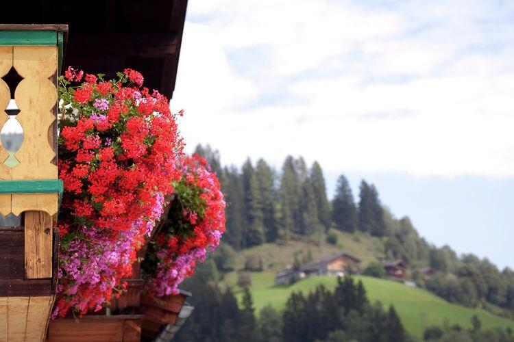 Ferienwohnung Appartment Christine (333717), Niedernsill, Pinzgau, Salzburg, Österreich, Bild 19