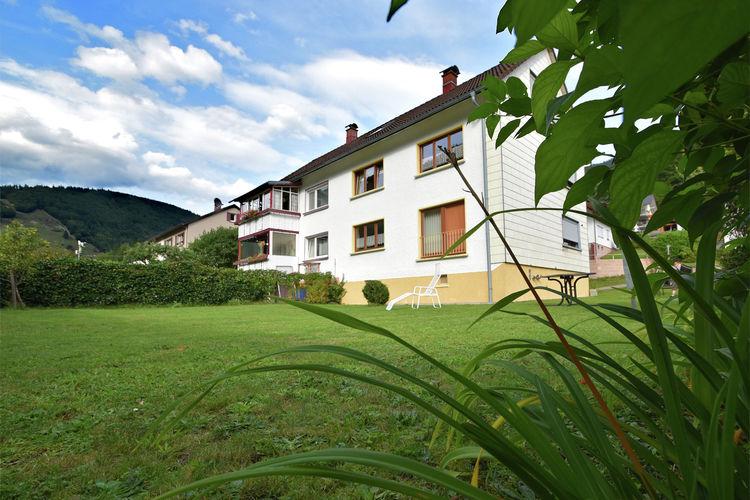Appartement  met wifi  Todtnau-BrandenbergTodtnau