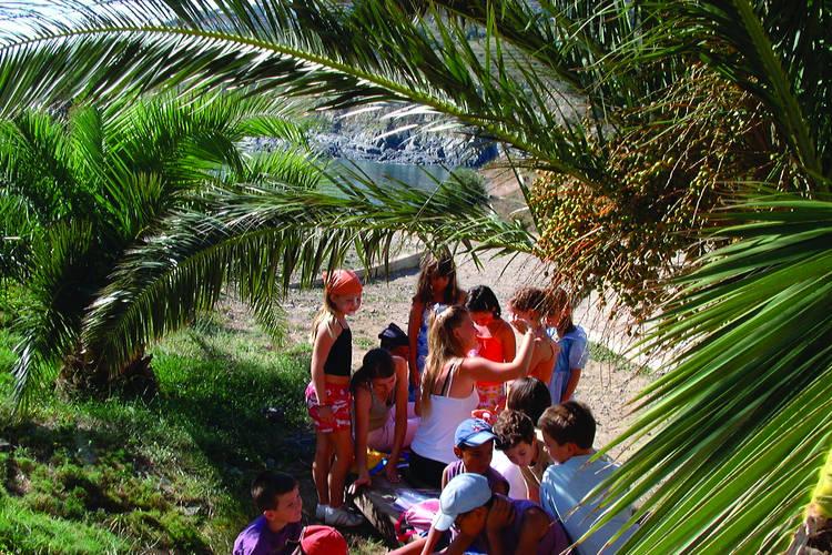 Ferienwohnung Village Des Aloes 4 (341607), Cerbère, Mittelmeerküste Pyrénées-Orientales, Languedoc-Roussillon, Frankreich, Bild 15