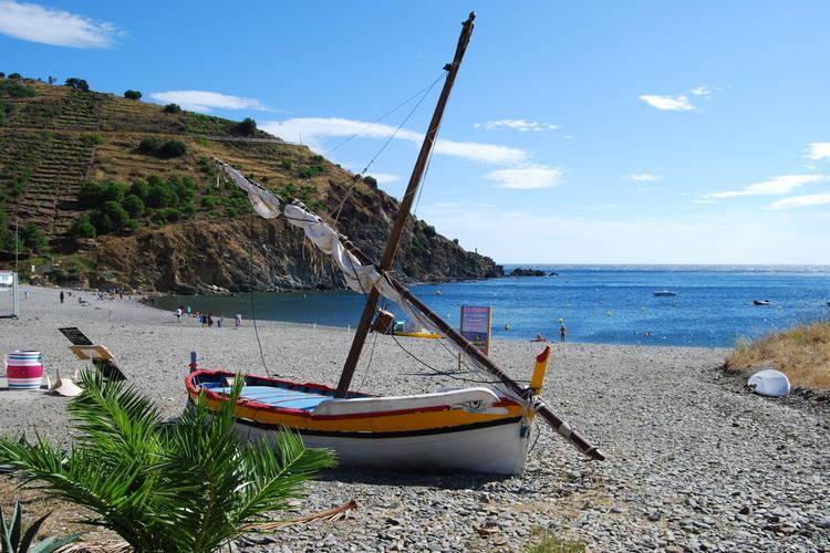 Ferienwohnung Village des Aloes 6 (341994), Cerbère, Mittelmeerküste Pyrénées-Orientales, Languedoc-Roussillon, Frankreich, Bild 17