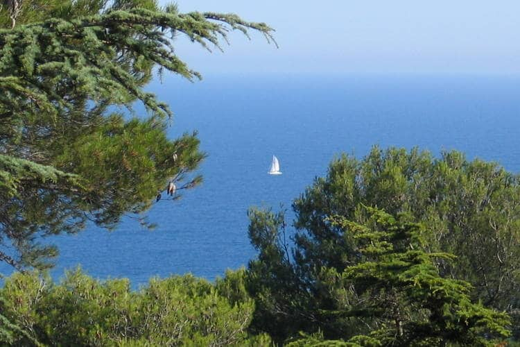 Ferienhaus Les Pescalunes (342669), Agde, Mittelmeerküste Hérault, Languedoc-Roussillon, Frankreich, Bild 13