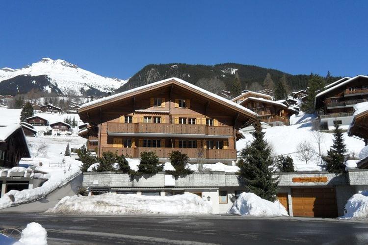 Grindelwald 10 - Chalet - Grindelwald