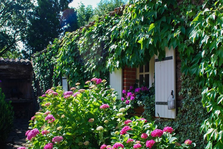 Domaine Puech Malou Cottage