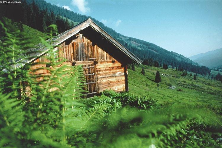 Appartement de vacances Doll (343537), Wildschönau-Niederau, Hohe Salve, Tyrol, Autriche, image 29