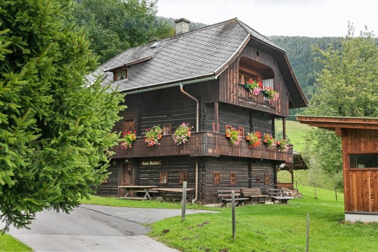 vakantiehuis Oostenrijk, Kaernten, Arriach vakantiehuis AT-9543-04