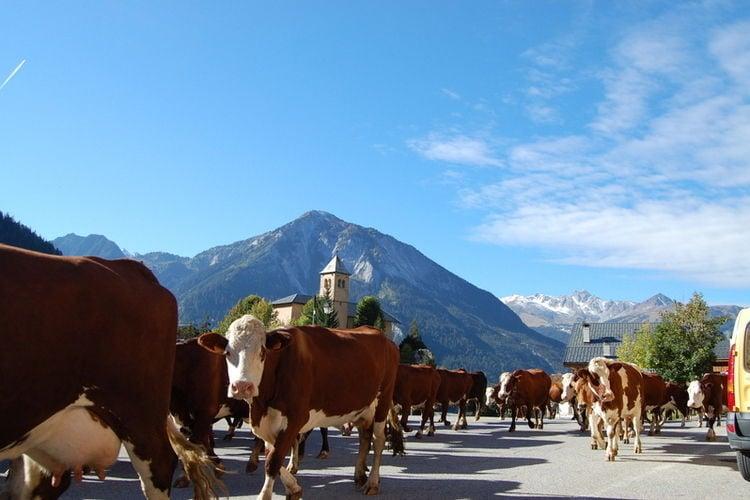 Ferienwohnung La Tour du Merle 2 (361356), Champagny en Vanoise, Savoyen, Rhône-Alpen, Frankreich, Bild 22