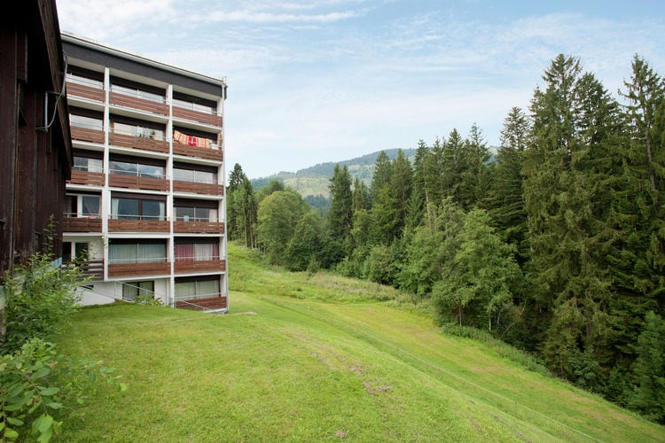 Berghof - Apartment - Ellmau