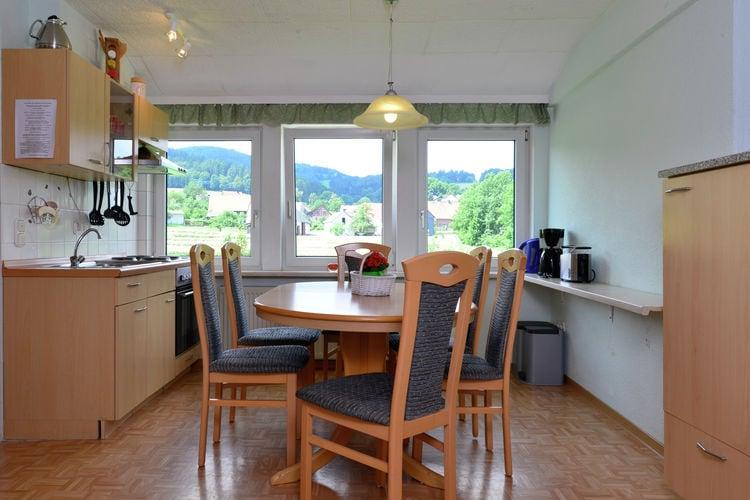 Appartement Duitsland, Sauerland, Diemelsee-Stormbruch Appartement DE-34519-12