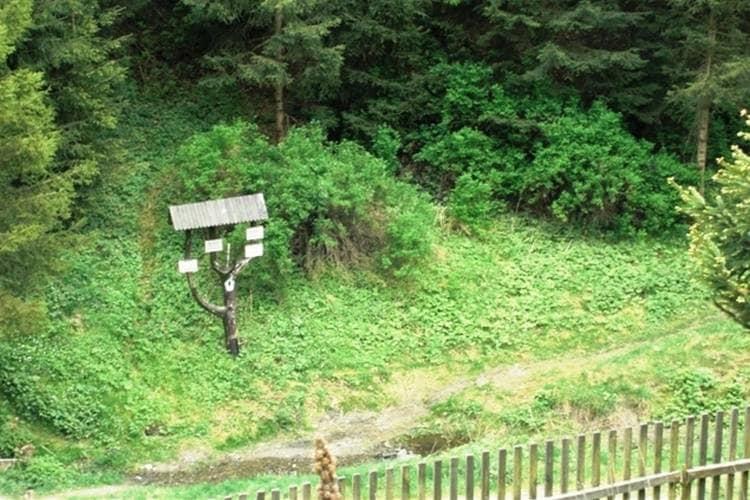Ferienwohnung Gemütliches Apartment in Rübeland am Waldrand (355600), Blankenburg (DE), Harz (Sachsen-Anhalt), Sachsen-Anhalt, Deutschland, Bild 12