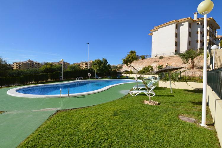 Holiday apartment Almendros (382925), Castillo de Don Juan, Costa Blanca, Valencia, Spain, picture 8
