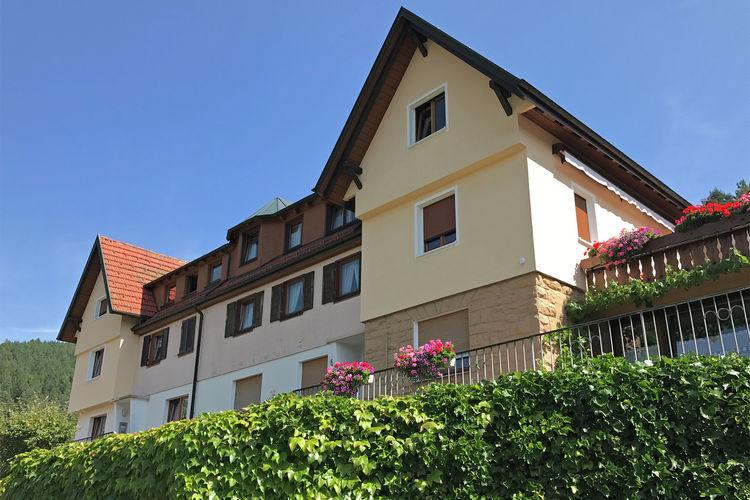 Appartement  met wifi  Baden-WurttembergPanoramablick