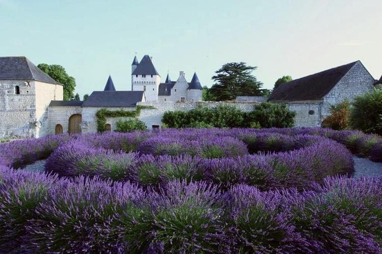 Ferienwohnung Relais du Plessis (360751), Richelieu, Indre-et-Loire, Centre - Val de Loire, Frankreich, Bild 32