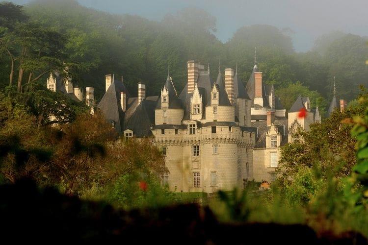 Ferienwohnung Relais du Plessis (360751), Richelieu, Indre-et-Loire, Centre - Val de Loire, Frankreich, Bild 33