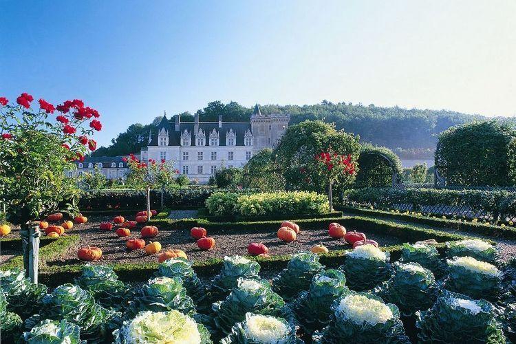 Ferienwohnung Relais du Plessis (360755), Richelieu, Indre-et-Loire, Centre - Val de Loire, Frankreich, Bild 30