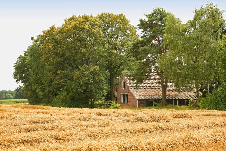 Farmhouse Limburg