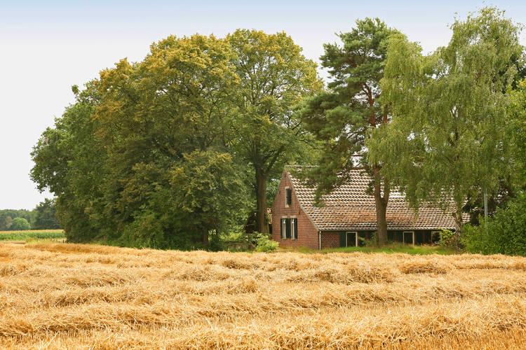 Boerderij  met wifi  Stramproy  Deze 19e-eeuwse boerderij ligt landelijk..