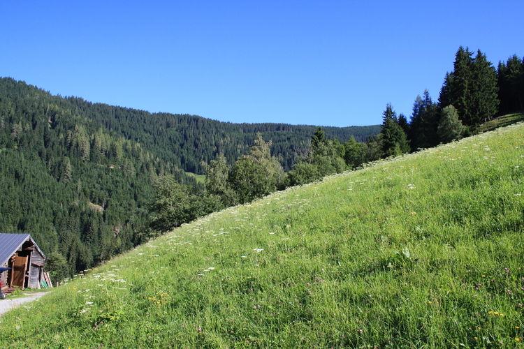 Ferienwohnung Durchegg (363977), Wagrain, Pongau, Salzburg, Österreich, Bild 25