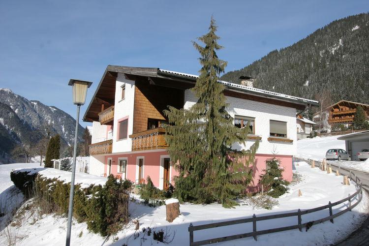 Ferienwohnung Irene 1 (364042), St. Gallenkirch, Montafon, Vorarlberg, Österreich, Bild 5