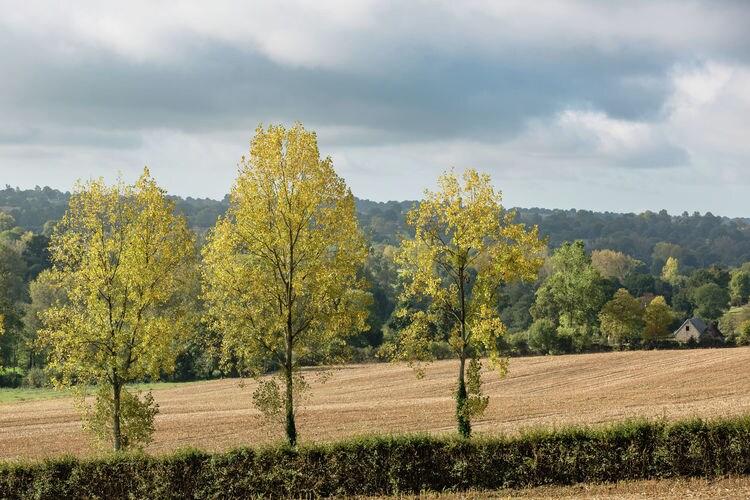 Ferienhaus La Moinerie (376798), La Lande d'Airou, Manche, Normandie, Frankreich, Bild 22