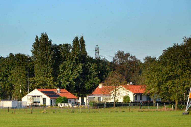 vakantiehuis Nederland, Noord-Brabant, Oisterwijk vakantiehuis NL-5062-13