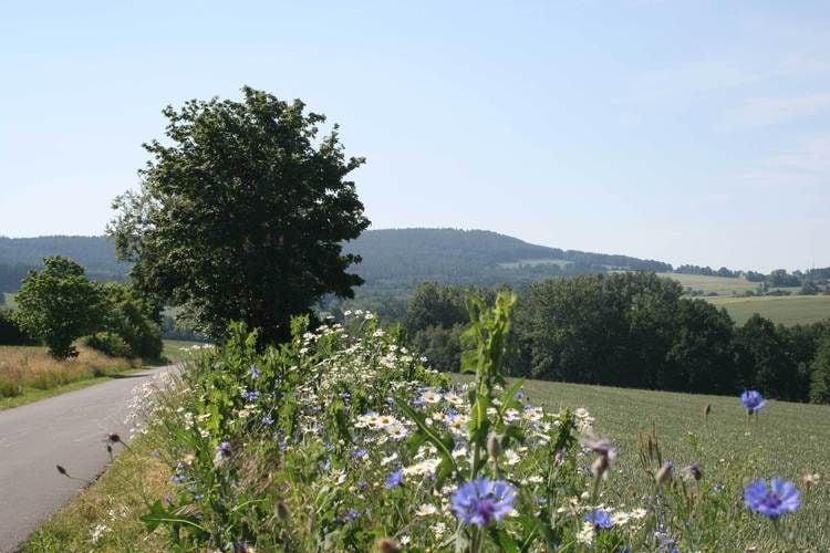 Ferienwohnung Im Frankenwald (365474), Weißenbrunn, Frankenwald, Bayern, Deutschland, Bild 25