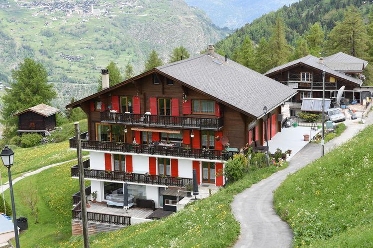 Appartement Zwitserland, Jura, Grächen Appartement CH-3925-37