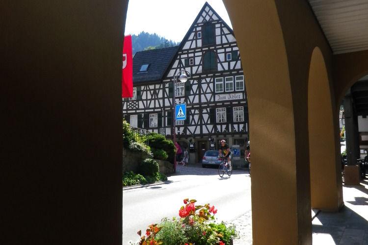 Holiday apartment Schiltach (383056), Schiltach, Black Forest, Baden-Württemberg, Germany, picture 27