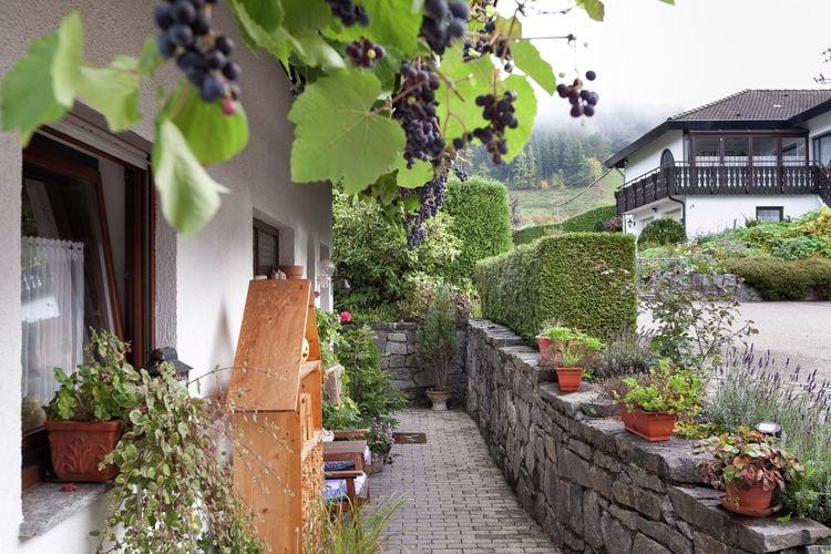 Holiday apartment Schiltach (383056), Schiltach, Black Forest, Baden-Württemberg, Germany, picture 15