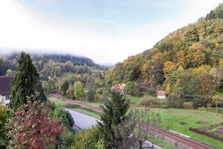 Holiday apartment Schiltach (383056), Schiltach, Black Forest, Baden-Württemberg, Germany, picture 18