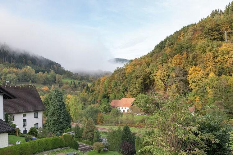 Holiday apartment Schiltach (383056), Schiltach, Black Forest, Baden-Württemberg, Germany, picture 21