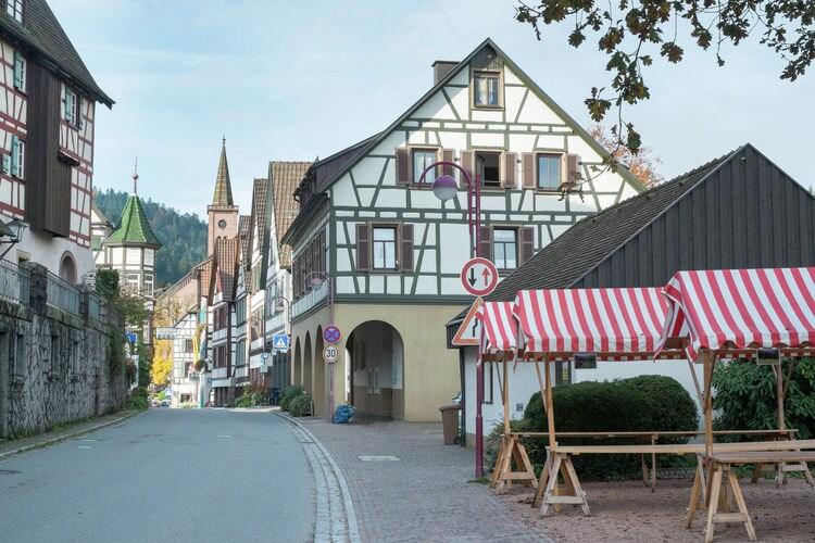 Holiday apartment Schiltach (383056), Schiltach, Black Forest, Baden-Württemberg, Germany, picture 23