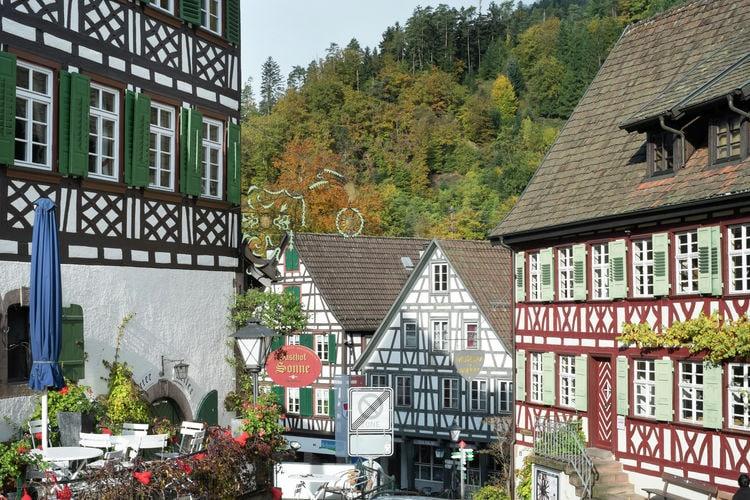 Holiday apartment Schiltach (383056), Schiltach, Black Forest, Baden-Württemberg, Germany, picture 24