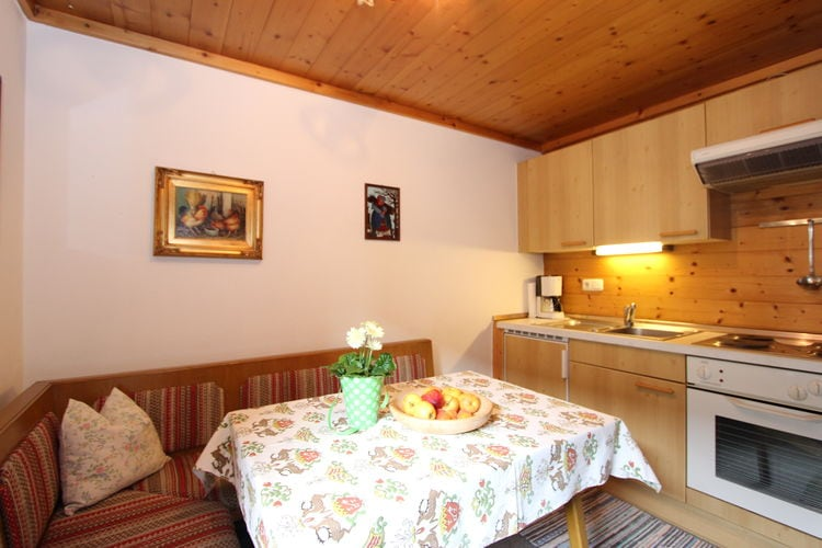 Rosenegg - Apartment - Fieberbrunn - PillerseeTal