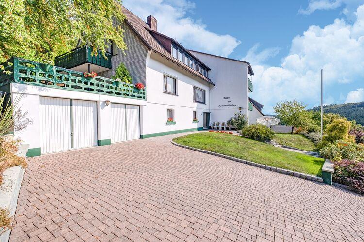 Vakantiehuizen Duitsland | Sauerland | Appartement te huur in Medebach-Titmaringhausen   met wifi 11 personen