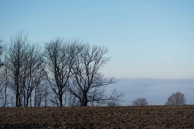 Ferienwohnung Im Erzgebirge (392671), Pockau, Erzgebirge, Sachsen, Deutschland, Bild 19