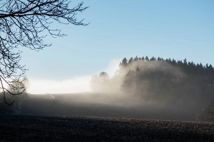 Ferienwohnung Im Erzgebirge (392671), Pockau, Erzgebirge, Sachsen, Deutschland, Bild 20