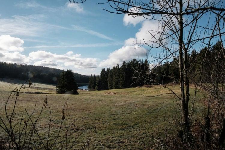 Ferienwohnung Am Bocksberg (392666), Hahnenklee, Harz (Niedersachsen), Niedersachsen, Deutschland, Bild 35