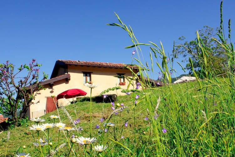vakantiehuis Italië, Toscana, Vergemoli vakantiehuis IT-55020-05