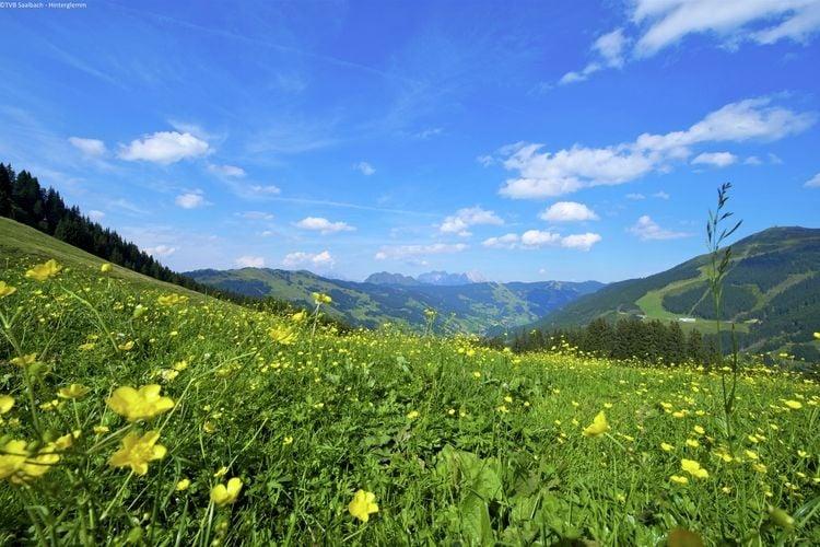 Ferienwohnung Traumlage (403999), Saalbach-Hinterglemm, Pinzgau, Salzburg, Österreich, Bild 29