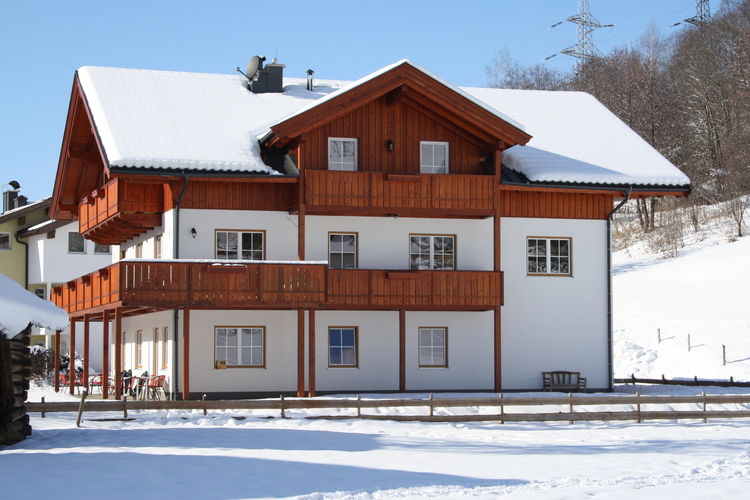 Hinterreit - Apartment - Maria Alm - Exterior - Winter