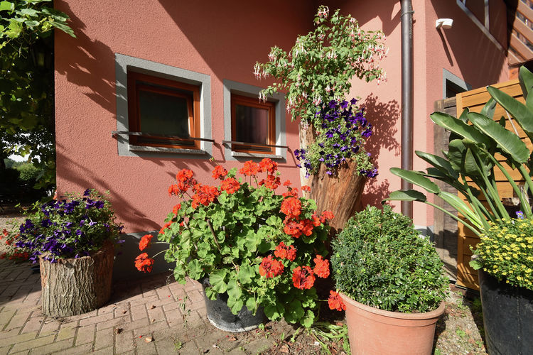 Ferienwohnung Im Rheintal (403950), Freiburg, Schwarzwald, Baden-Württemberg, Deutschland, Bild 27