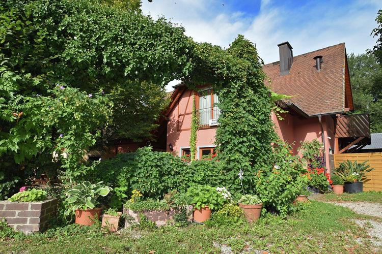 Duitsland | Baden-Wurttemberg | Appartement te huur in Freiburg    6 personen