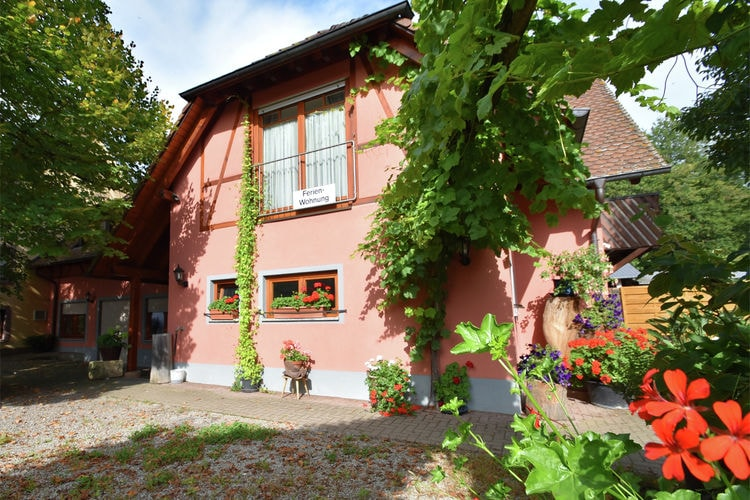 Ferienwohnung Im Rheintal (403950), Freiburg, Schwarzwald, Baden-Württemberg, Deutschland, Bild 3