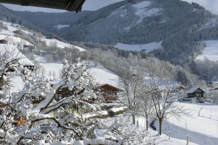 Ferienwohnung Sonnenstrahl (404238), Piesendorf, Pinzgau, Salzburg, Österreich, Bild 20