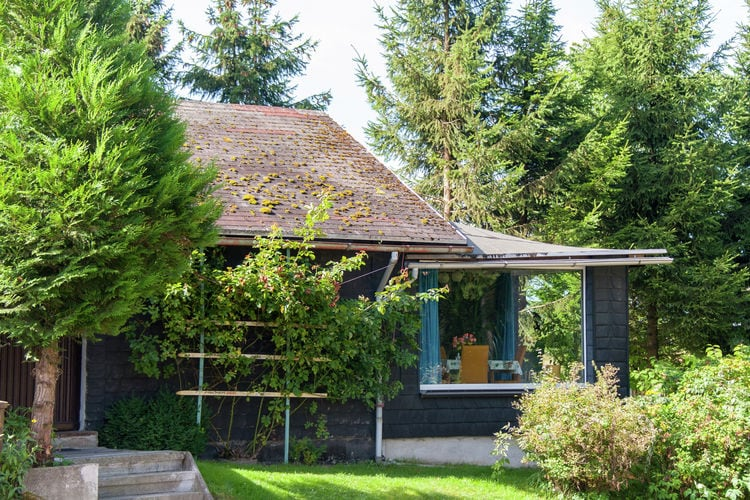 Holiday house Am Wald (405945), Neustadt, Thuringian Forest, Thuringia, Germany, picture 3