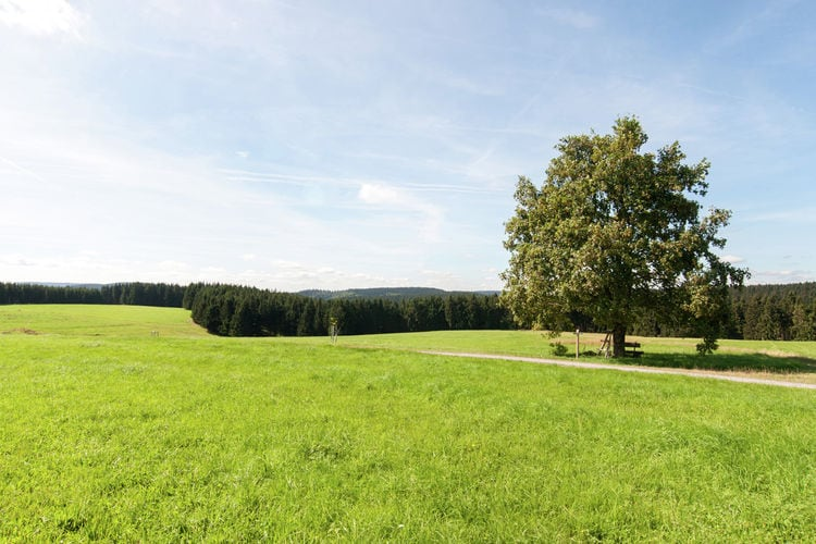 Holiday house Am Wald (405945), Neustadt, Thuringian Forest, Thuringia, Germany, picture 36