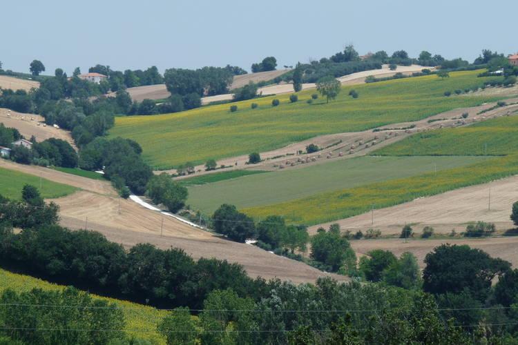 Ferienhaus Colline di Bartolo (407272), Corinaldo, Ancona, Marken, Italien, Bild 38